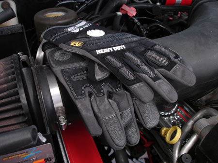 Gorgonz Gloves