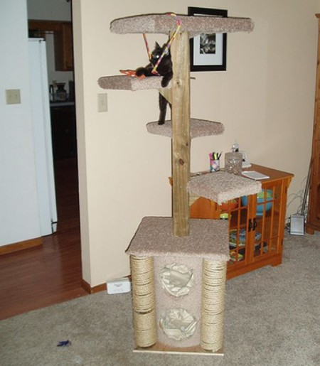 Glove winner a custom cat tree toolmonger for Cat climber plans