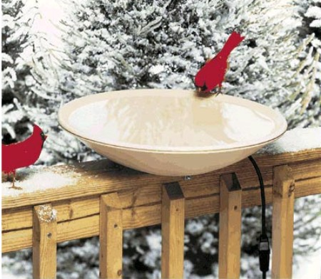 Birdbath wordreference forums for Piscina wordreference