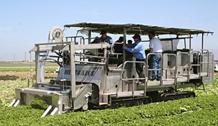 greenleaf-mechanical-harvester450.jpg